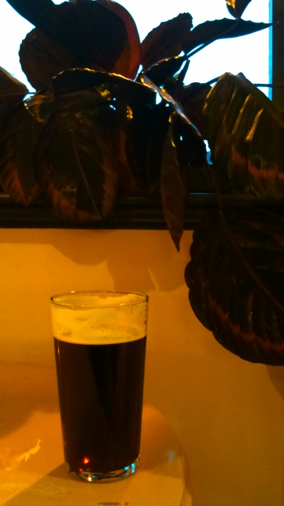 Figs & foilage, a lovely pint of Squawk Brewing Witness The Figness